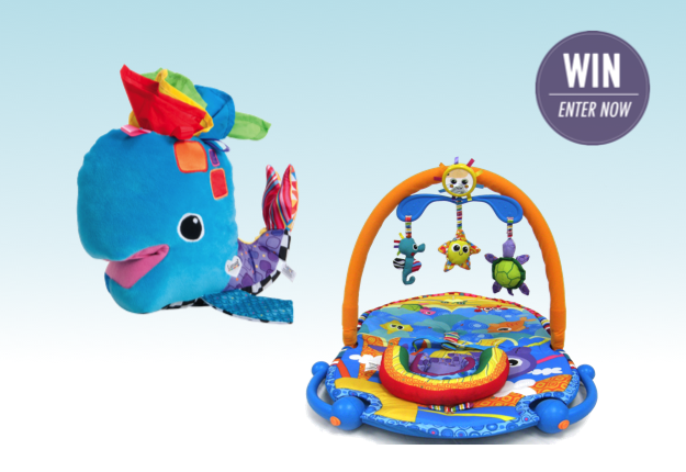lamaze sit up and see gym review